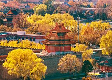"""""""舟""""游记丨主播彦舟:关于秋天的梦藏在了""""北京""""的枫叶里"""