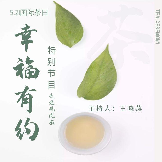 《幸福有约》5.21国际茶日特别节目——走进鸠坑茶